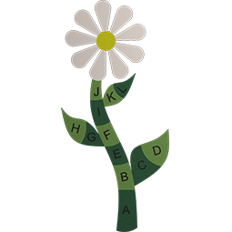 Flower With Letters